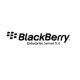 Hosted BlackBerry Enterprise Server (BES)